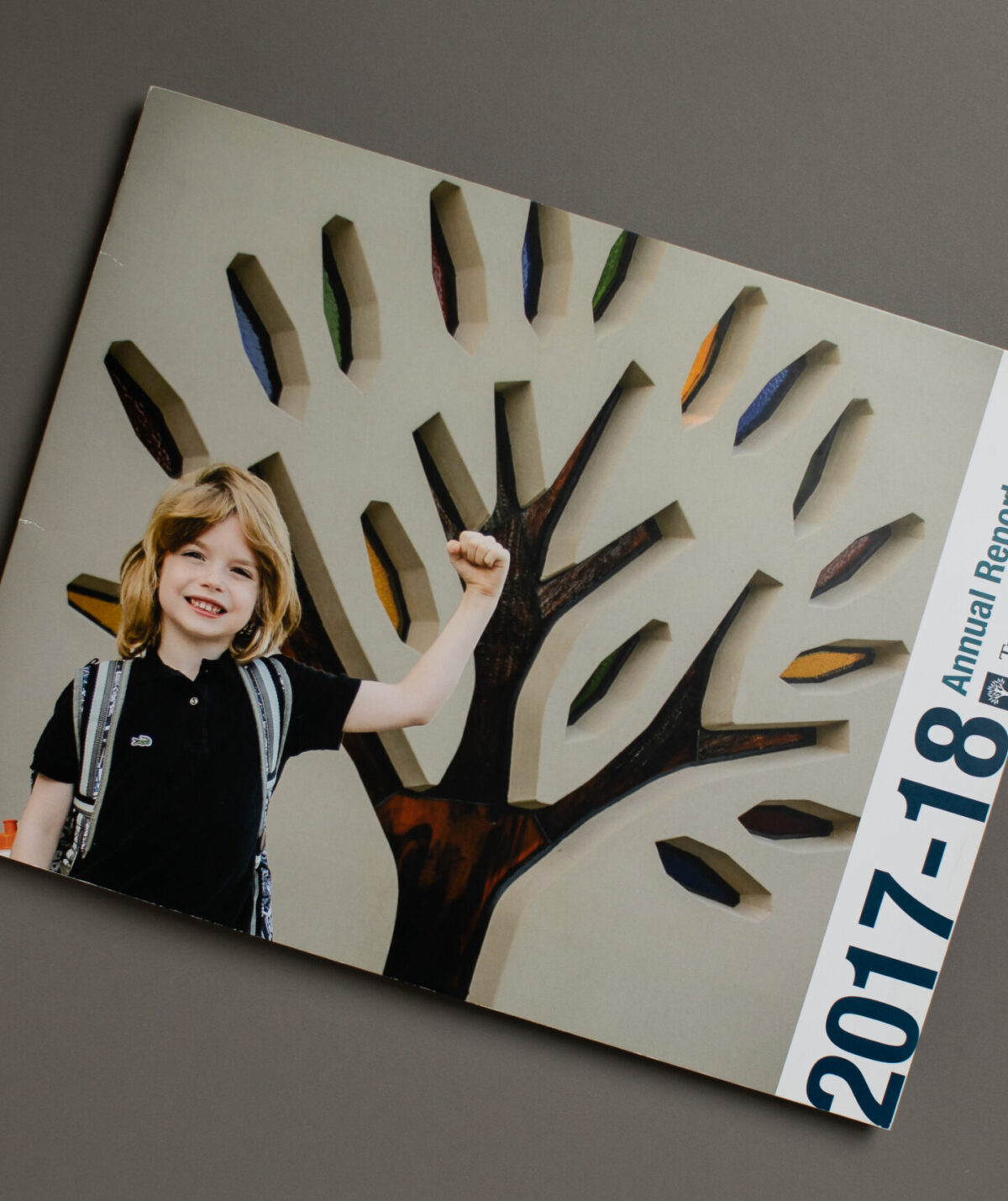 Fundraising Report Print Mail Project for Miami Valley School by Oregon Printing Dayton OH